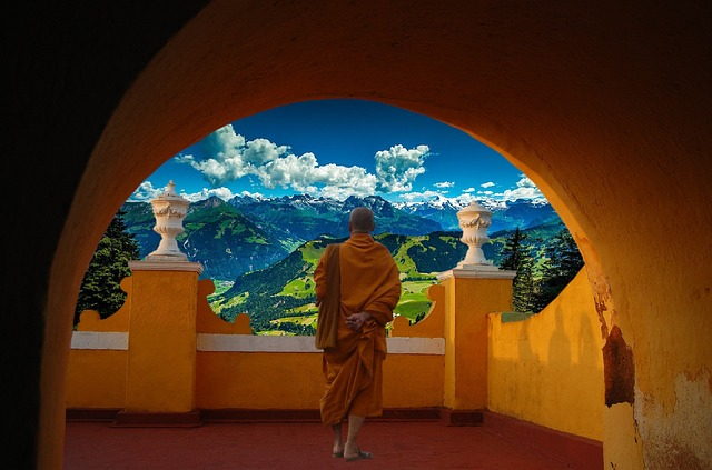 Buddhism in Indian History
