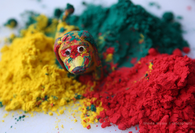 Gulal used in Holi is powdered color mostly herbal