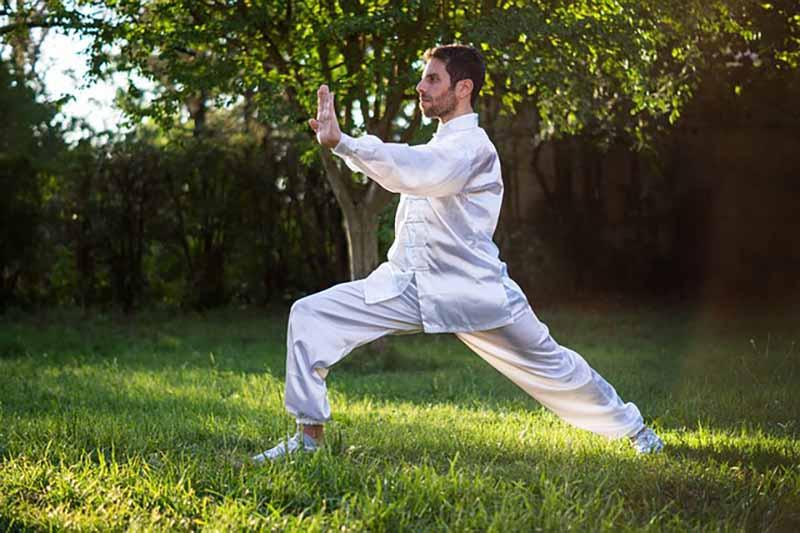Real Combat style of Kalaripayattu