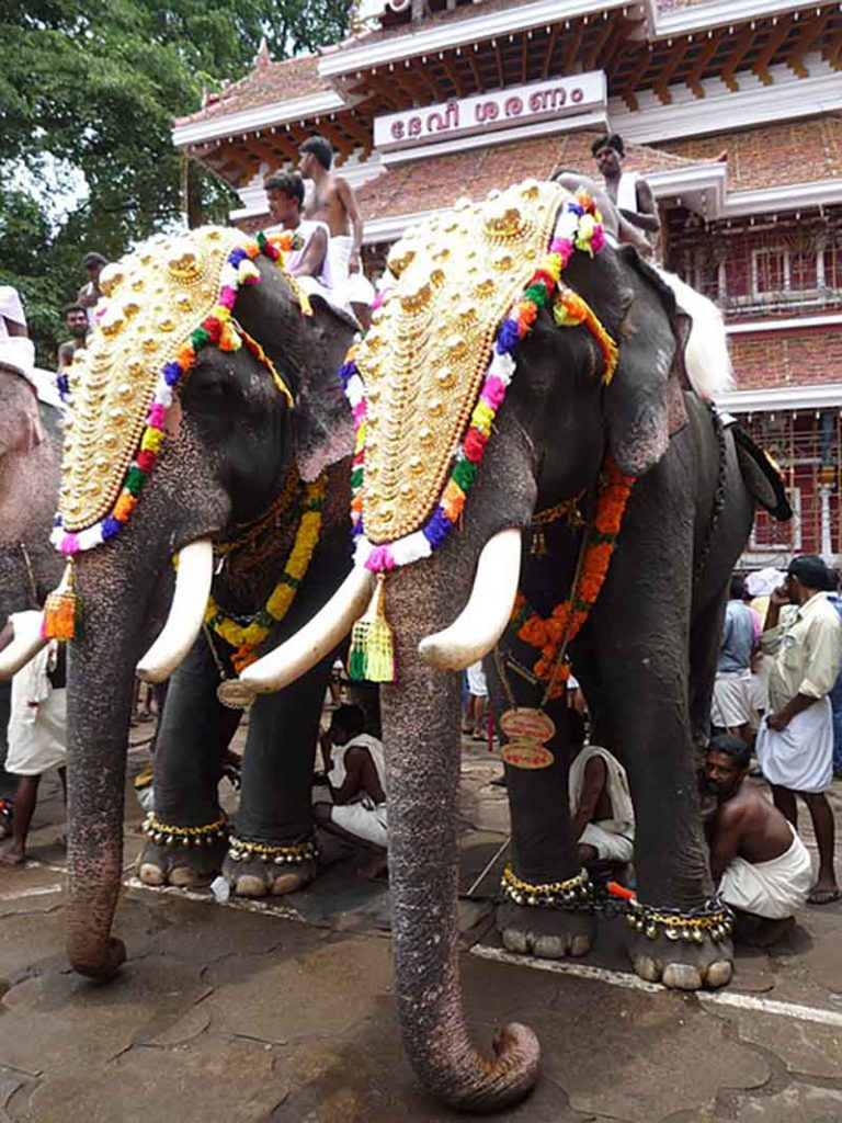 Thrissur elephant march- Best things to see in India