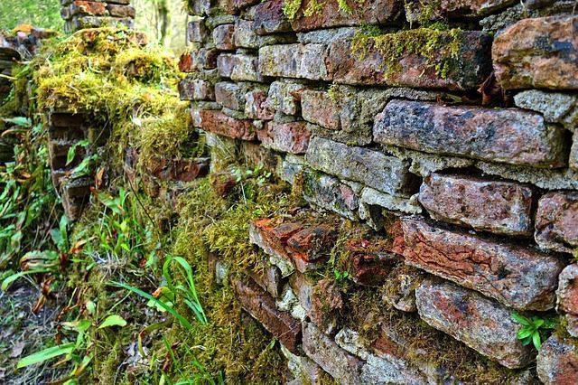 High Quality bricks help unearth the Harappan Civilization