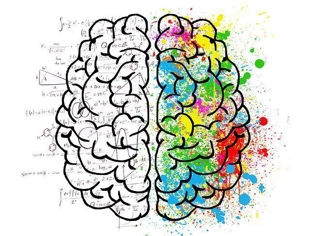 Sanskrit Increases brain power