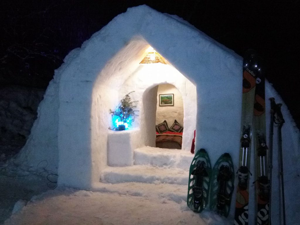 Manali Igloo Stay