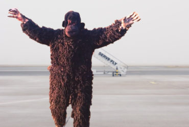 Airport Staff Dress As Bear To Scare Away Langurs