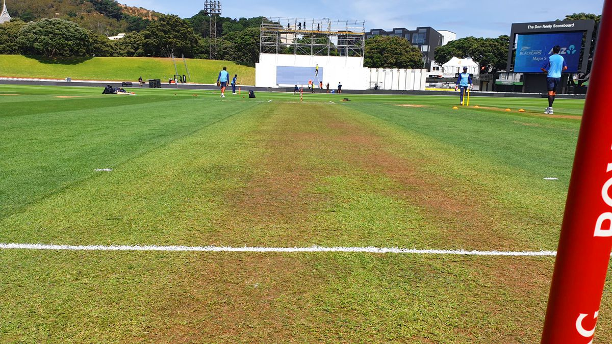Green Grass Covered Pitch For the First India New Zealand Test Worries Fans