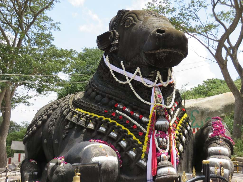 Nandi, the bull, had cursed Ravan that monkeys will become a cause of your destruction